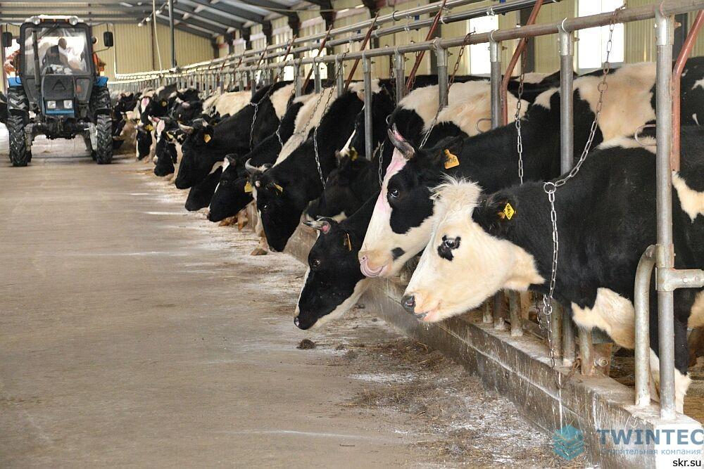 Полы в помещениях сельскохозяйственного назначения